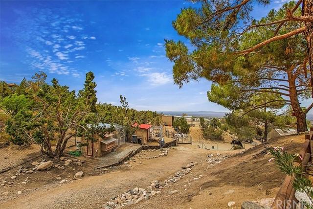 Closed | 2912 Snow Line Drive Pinon Hills, CA 92372 15