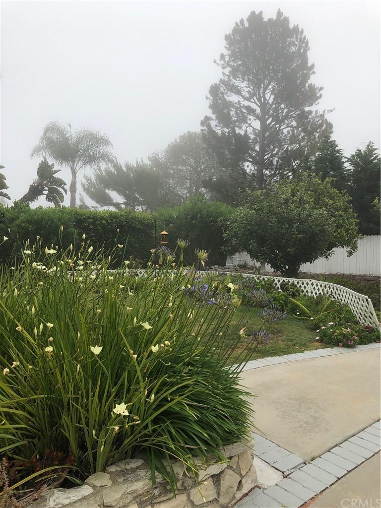 Active | 2236 Via La Brea Palos Verdes Estates, CA 90274 7