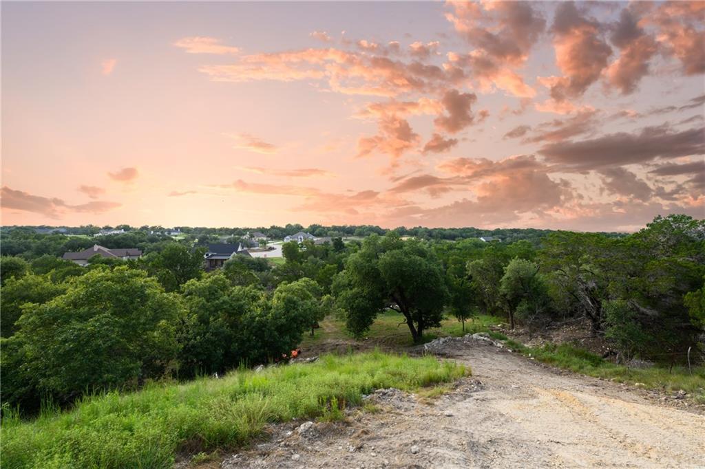 Active | 141 Taylor Creek Way Liberty Hill, TX 78642 6