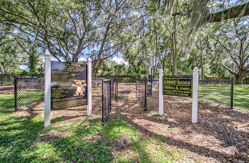 Sold Property | 9320 RIVER ROCK LANE RIVERVIEW, FL 33578 42