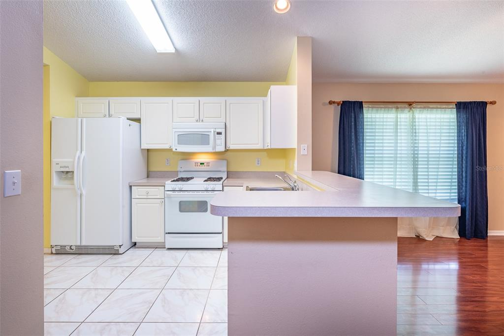 Sold Property | 6720 SUMMER HAVEN DRIVE RIVERVIEW, FL 33578 9
