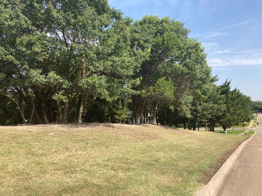 Active | 1339 Overlook Circle Cedar Hill, Texas 75104 1