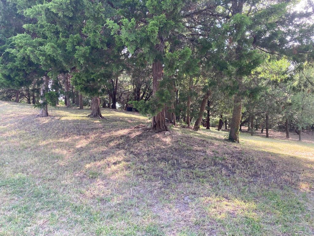 Active | 1339 Overlook Circle Cedar Hill, Texas 75104 10