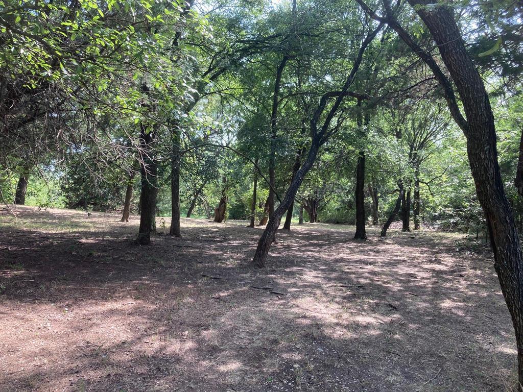 Active | 1339 Overlook Circle Cedar Hill, Texas 75104 11