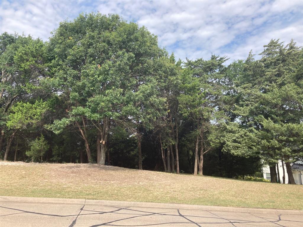 Active | 1339 Overlook Circle Cedar Hill, Texas 75104 12
