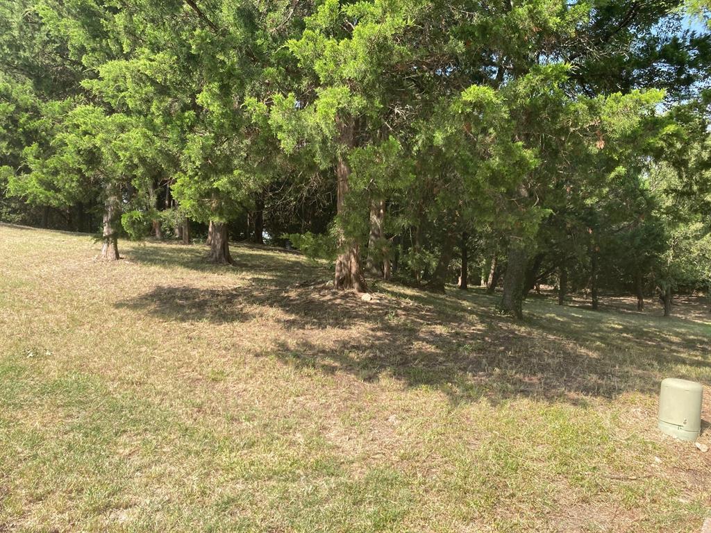 Active | 1339 Overlook Circle Cedar Hill, Texas 75104 13