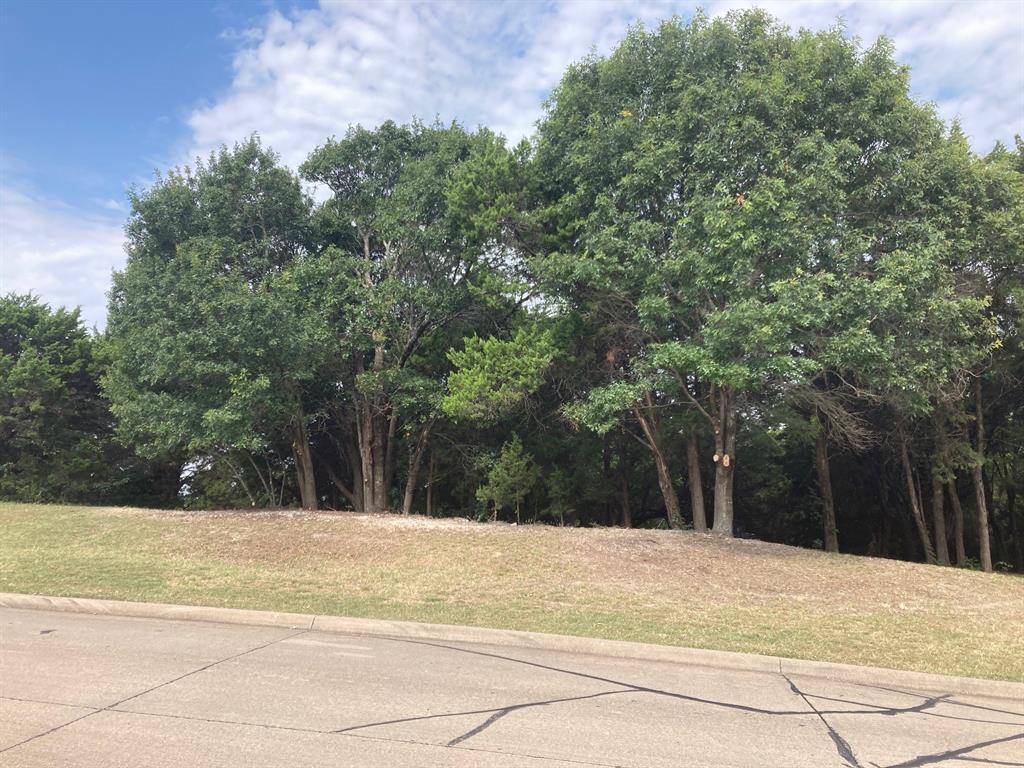 Active | 1339 Overlook Circle Cedar Hill, Texas 75104 2