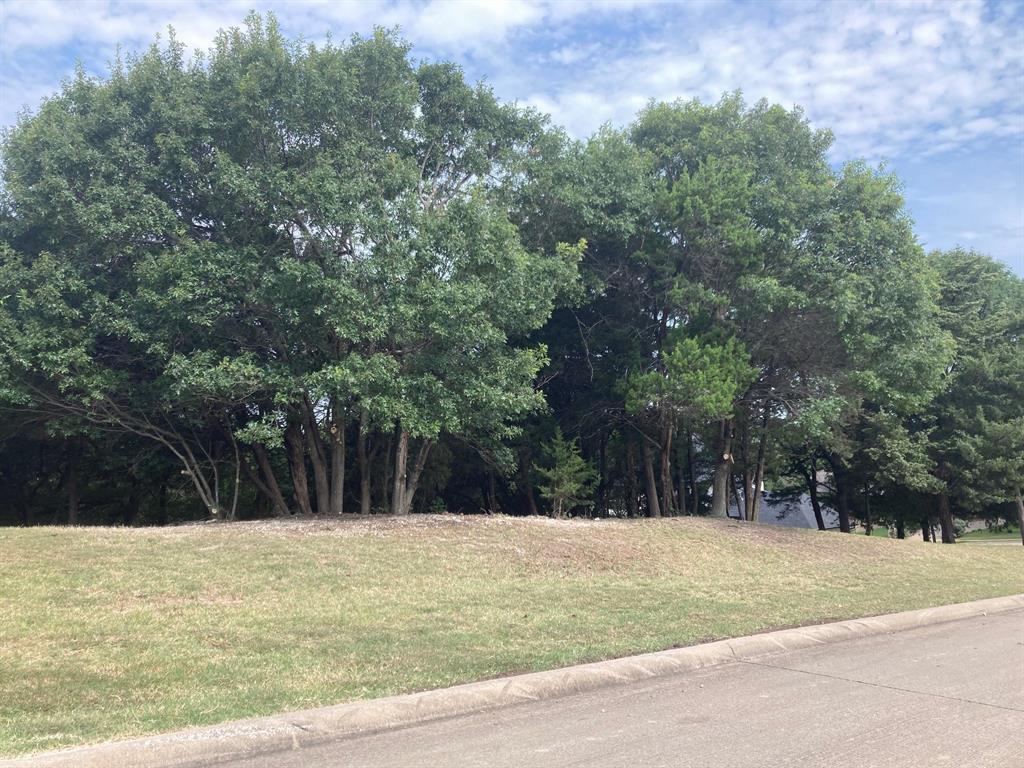 Active | 1339 Overlook Circle Cedar Hill, Texas 75104 3