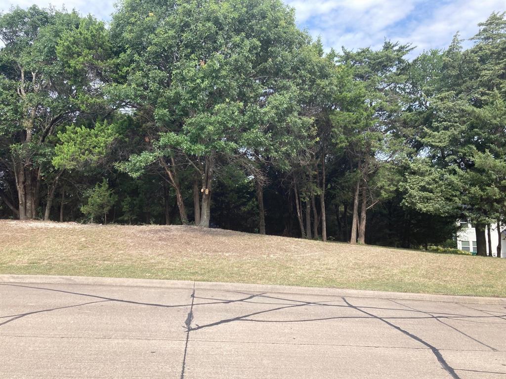 Active | 1339 Overlook Circle Cedar Hill, Texas 75104 4
