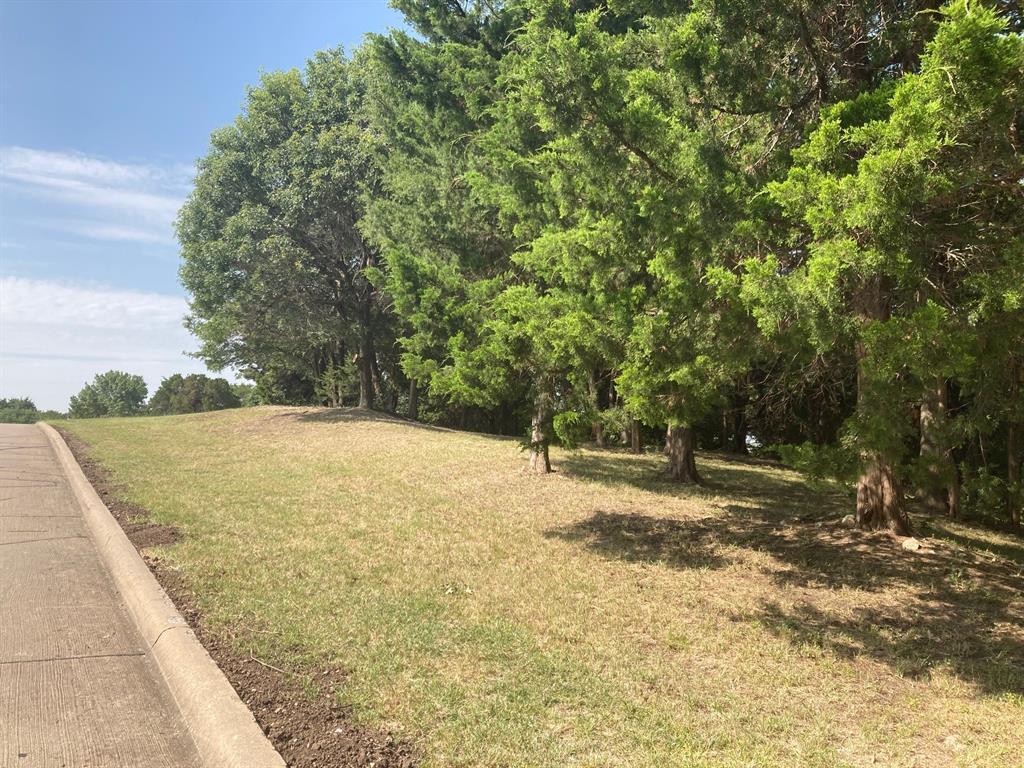 Active | 1339 Overlook Circle Cedar Hill, Texas 75104 5