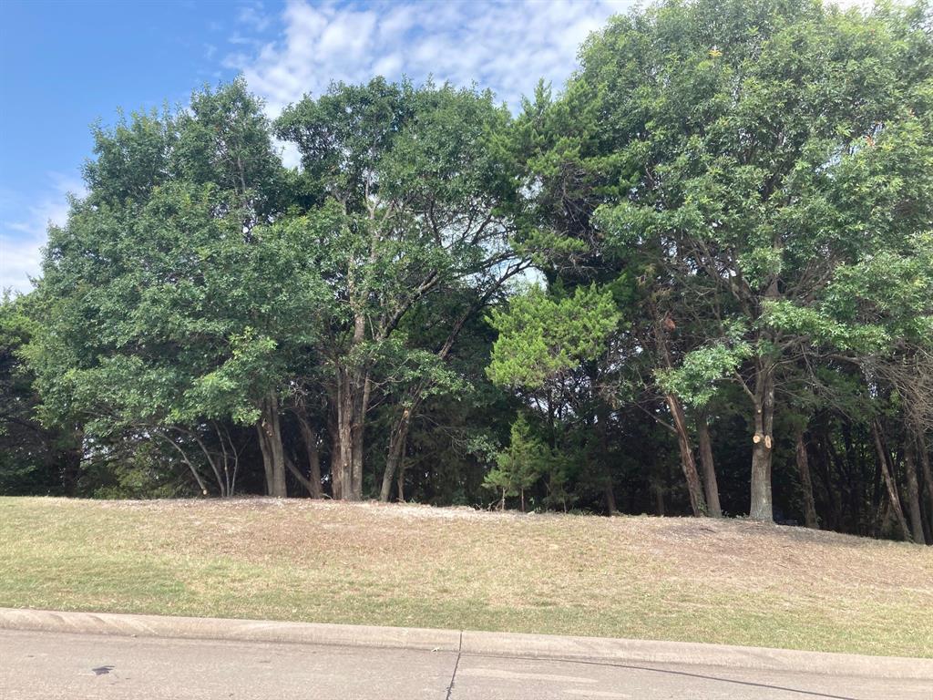 Active | 1339 Overlook Circle Cedar Hill, Texas 75104 6