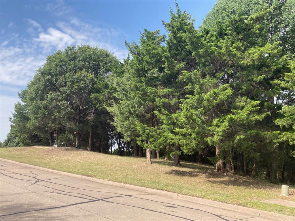 Active | 1339 Overlook Circle Cedar Hill, Texas 75104 7