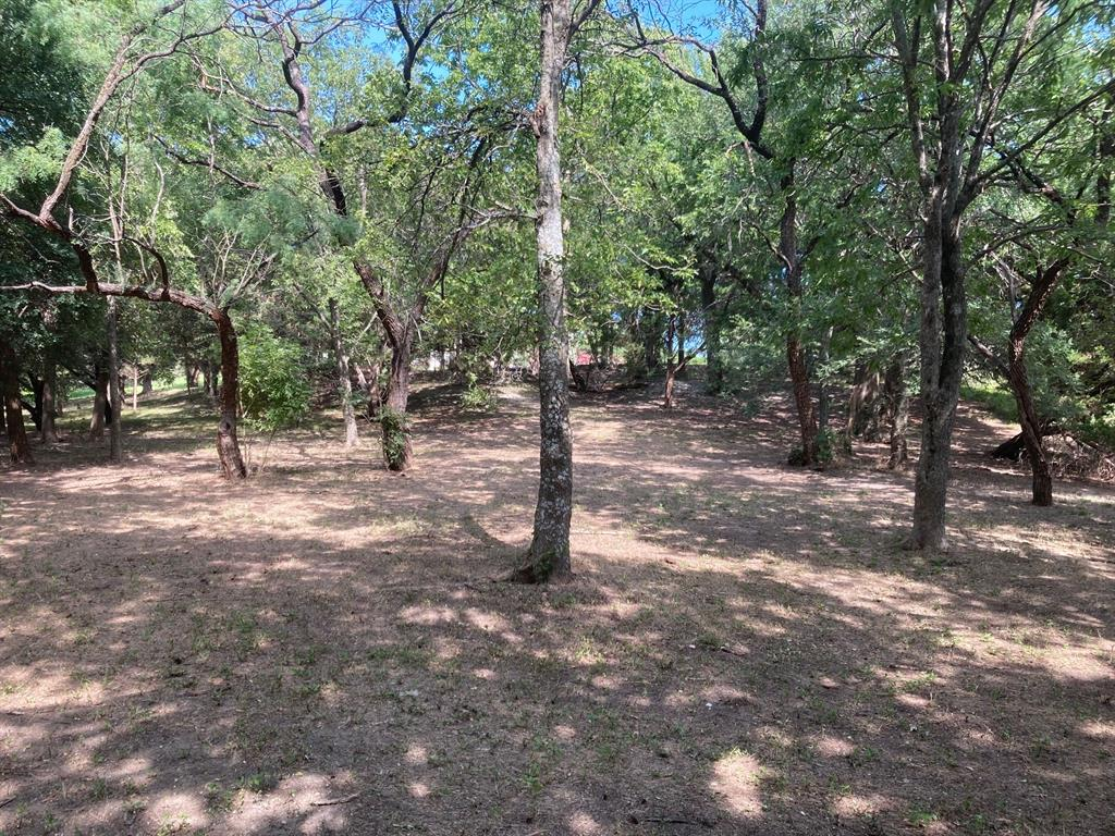 Active | 1339 Overlook Circle Cedar Hill, Texas 75104 8