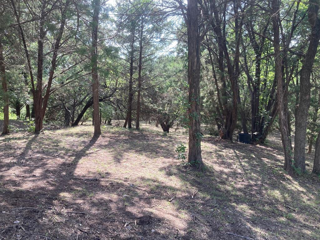 Active | 1339 Overlook Circle Cedar Hill, Texas 75104 9