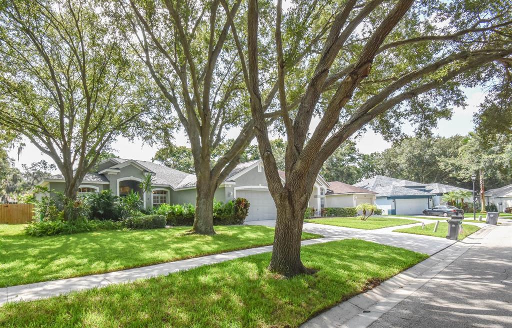 Sold Property   6931 POTOMAC CIRCLE RIVERVIEW, FL 33578 25