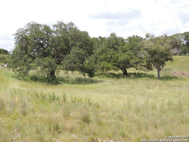 Active Option | 134 PUZZLE PASS Spring Branch, TX 78070 11