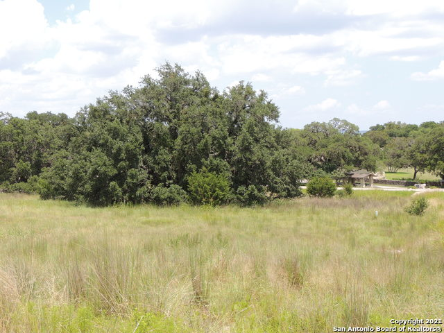 Active Option | 134 PUZZLE PASS Spring Branch, TX 78070 13
