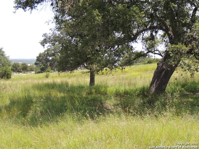 Active Option | 134 PUZZLE PASS Spring Branch, TX 78070 6
