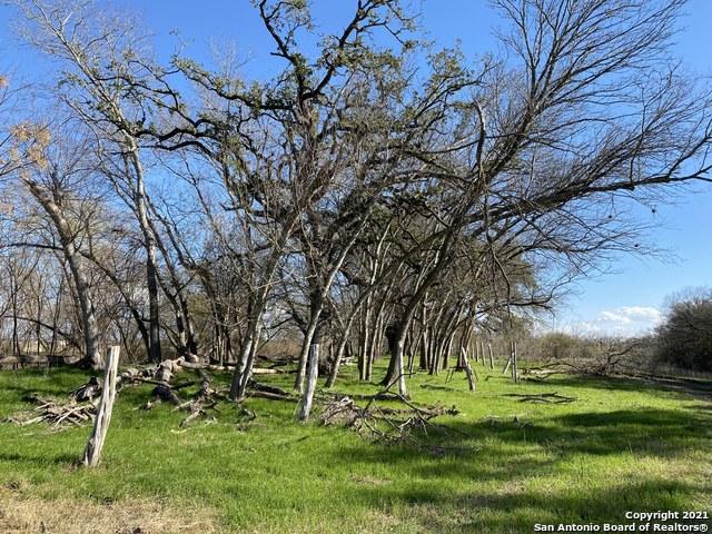 Active   273 W County Road 672 Natalia, TX 78059 9