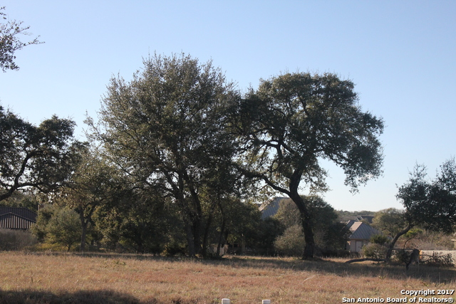 Active | 30809 Ovaro Circle Fair Oaks Ranch, TX 78015 6