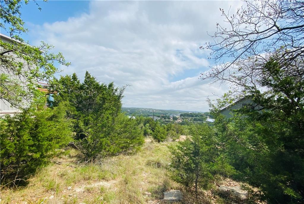 Active | 10706 Lake Park Drive Dripping Springs, TX 78620 1