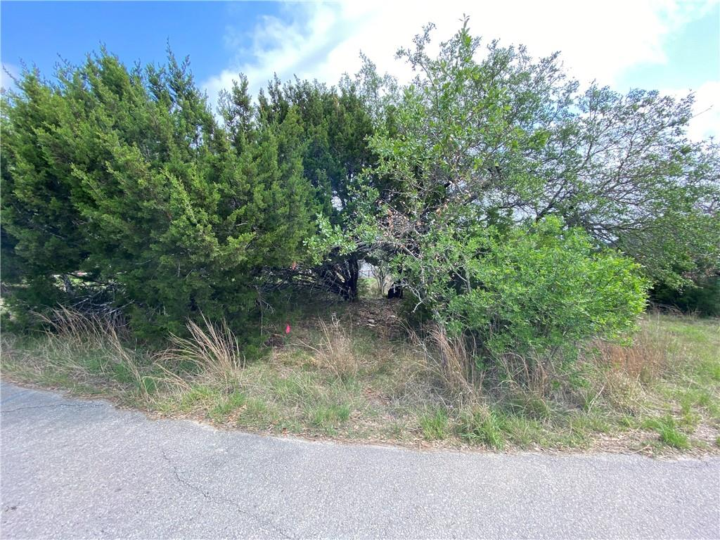 Active | 10706 Lake Park Drive Dripping Springs, TX 78620 9