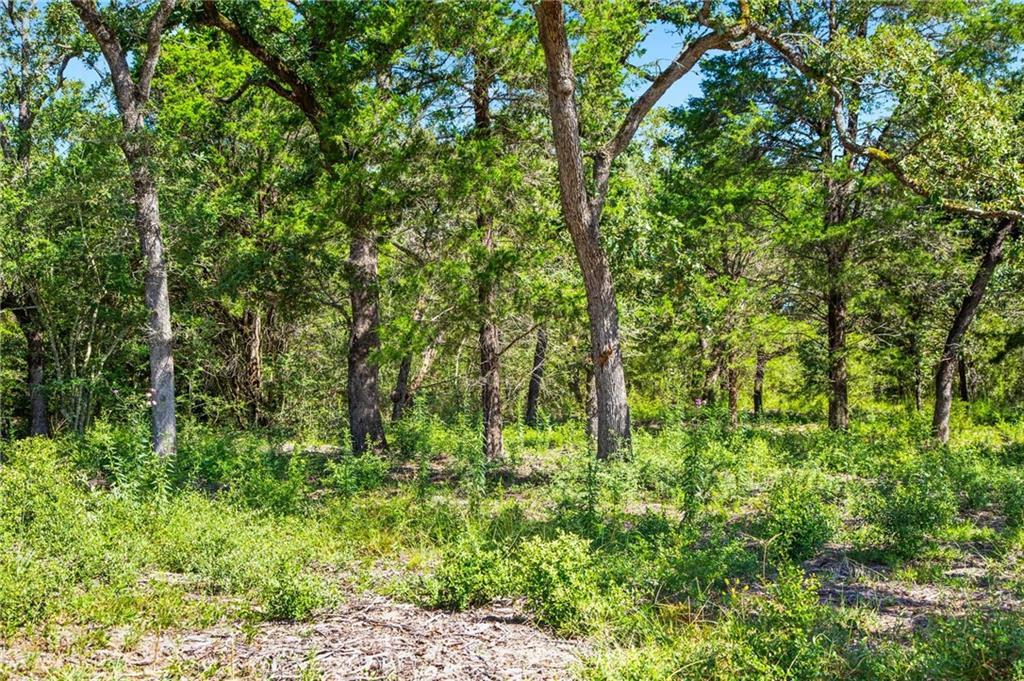 Active | 1136 Oak View Lane Thrall, TX 76578 0