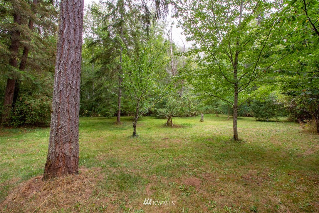 Sold Property   132 Brushplant Loop Road Quilcene, WA 98376 23