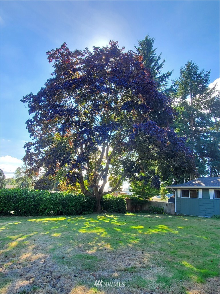 Pending Inspection | 17410 Clover Road Bothell, WA 98012 29