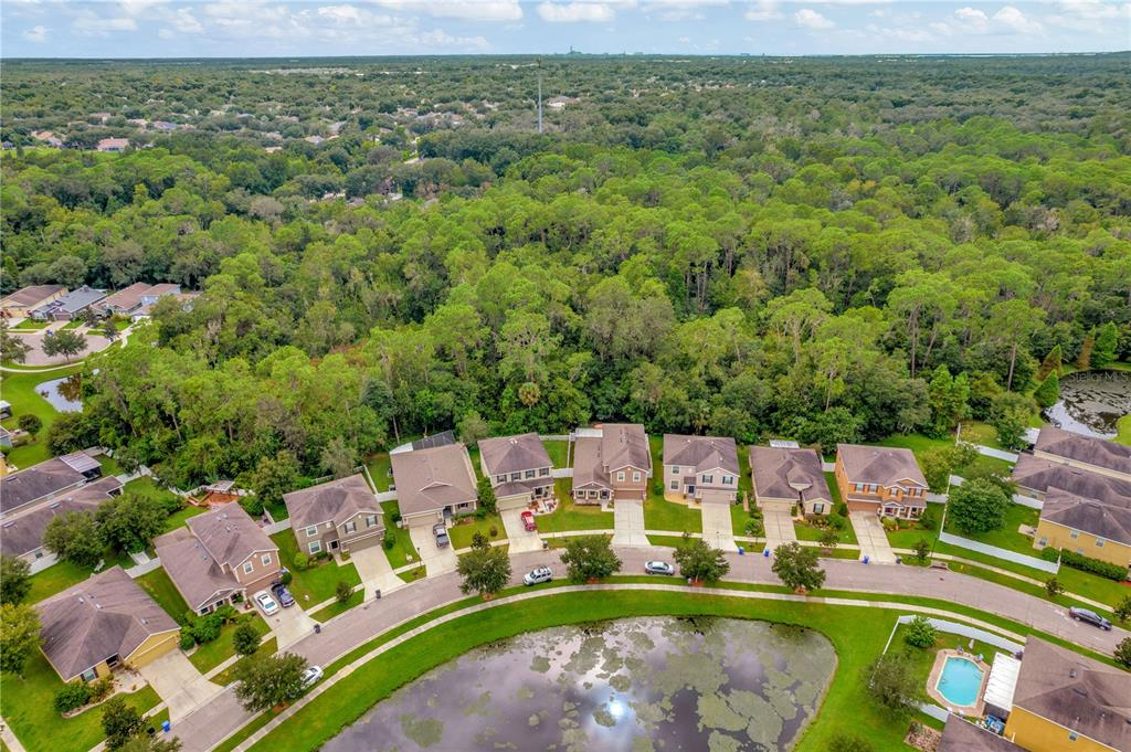 Pending   12211 SWAYING MOSS CIRCLE RIVERVIEW, FL 33569 1