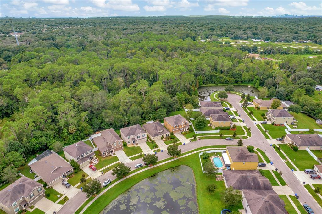 Pending   12211 SWAYING MOSS CIRCLE RIVERVIEW, FL 33569 58