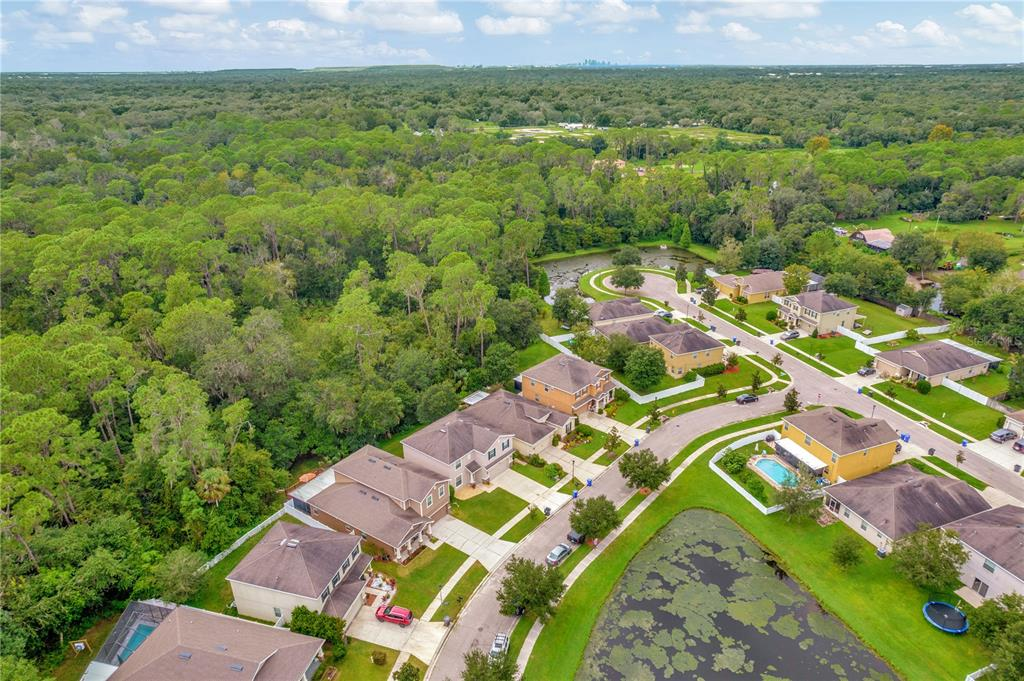 Pending   12211 SWAYING MOSS CIRCLE RIVERVIEW, FL 33569 59