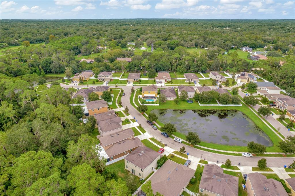 Pending   12211 SWAYING MOSS CIRCLE RIVERVIEW, FL 33569 60