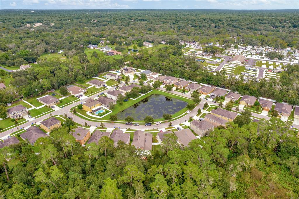 Pending   12211 SWAYING MOSS CIRCLE RIVERVIEW, FL 33569 61