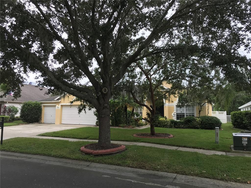 Active | 17734 CURRIE FORD DRIVE LUTZ, FL 33558 0