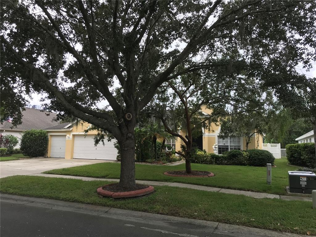 Active | 17734 CURRIE FORD DRIVE LUTZ, FL 33558 2