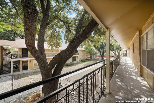 Active Option   923 Vance Jackson Rd #1506 San Antonio, TX 78201 3