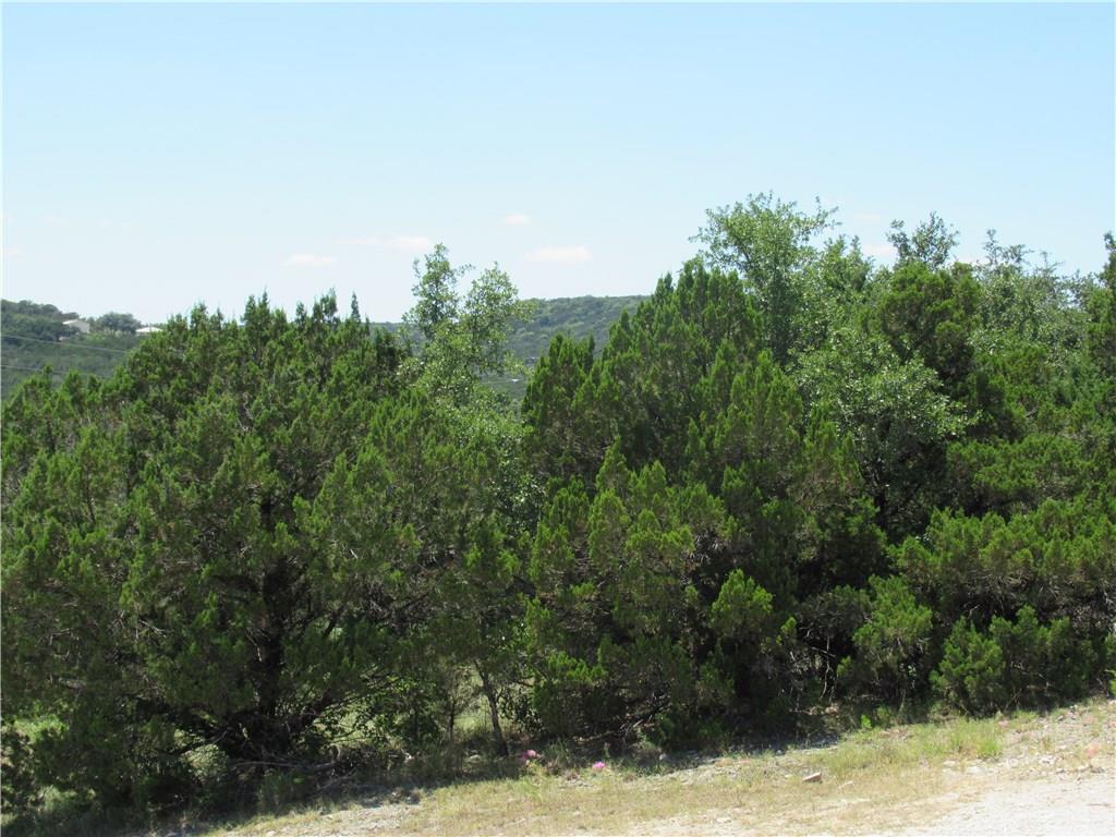 Active | 10612 Deer Canyon Road Jonestown, TX 78645 3