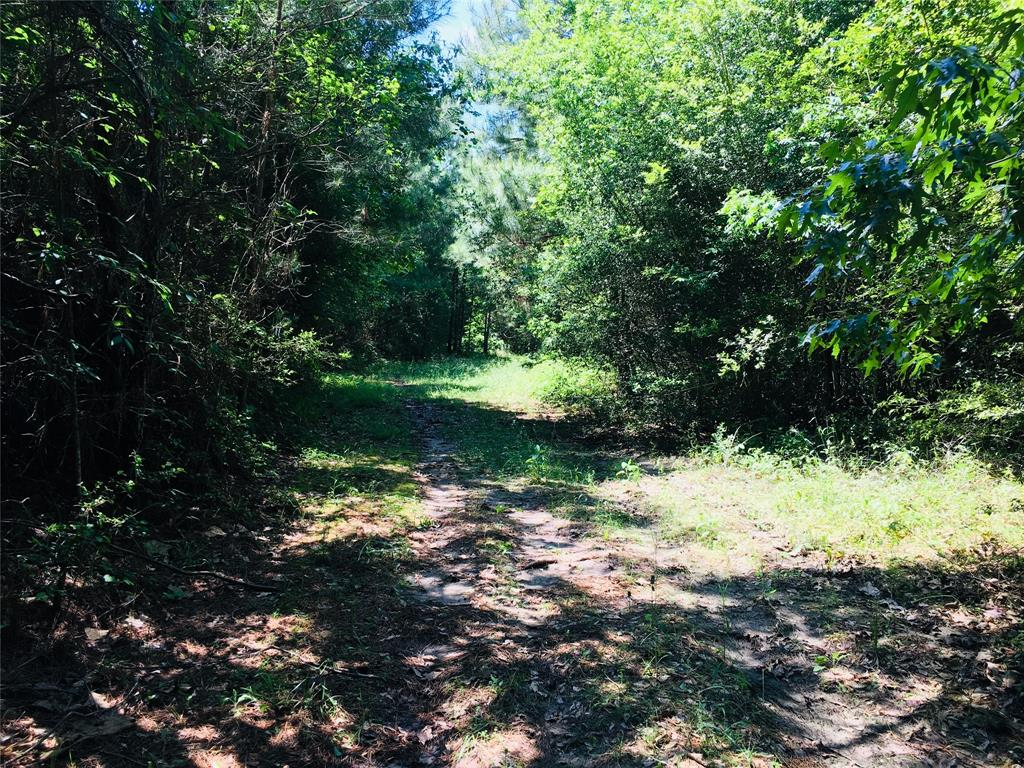 Active | 3268 State Highway 75 N Huntsville, Texas 77320 10