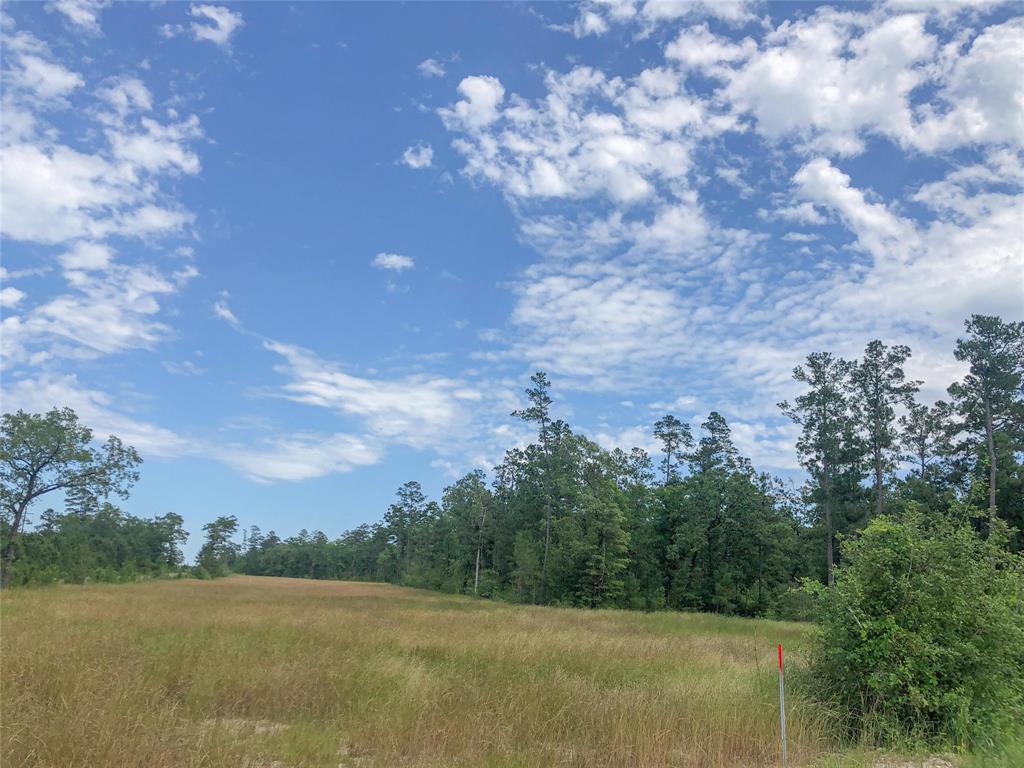 Active   00000 Lost Indian Camp Road Huntsville, Texas 77320 10