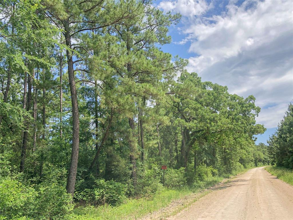 Active   00000 Lost Indian Camp Road Huntsville, Texas 77320 2