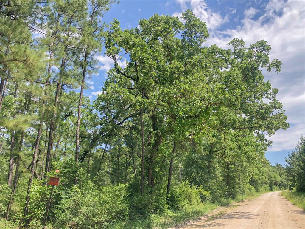 Active   00000 Lost Indian Camp Road Huntsville, Texas 77320 3
