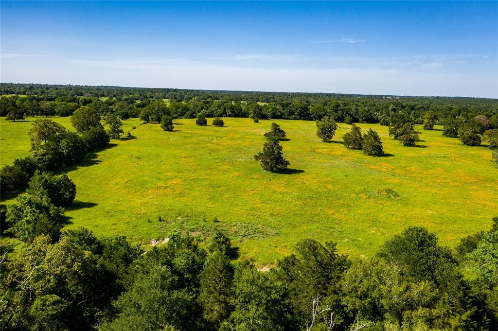 Pending | 32 Acres FM 1696 West Huntsville, Texas 77320 1