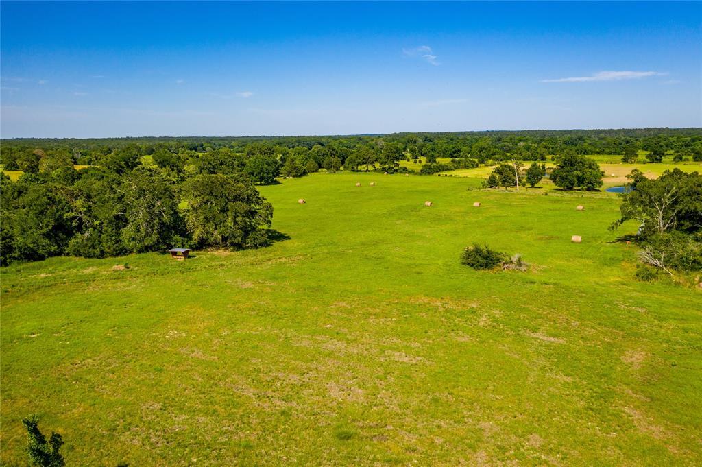 Pending | 32 Acres FM 1696 West Huntsville, Texas 77320 2