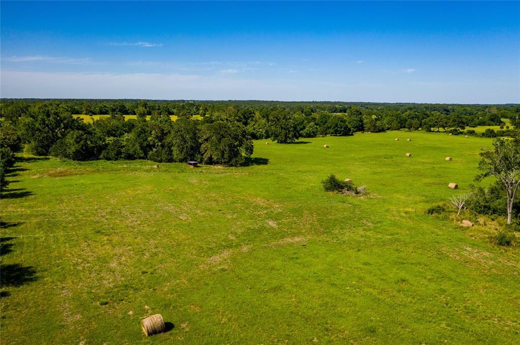 Pending | 32 Acres FM 1696 West Huntsville, Texas 77320 4