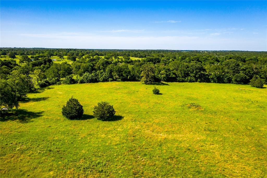 Pending | 32 Acres FM 1696 West Huntsville, Texas 77320 6