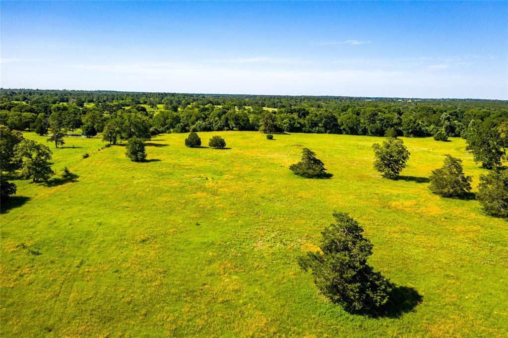 Pending | 32 Acres FM 1696 West Huntsville, Texas 77320 8