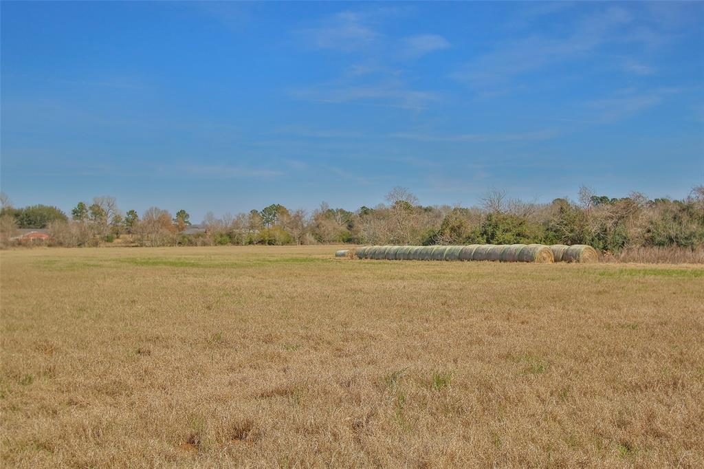 Option Pending | 17551 Mathis Road Waller, Texas 77484 43