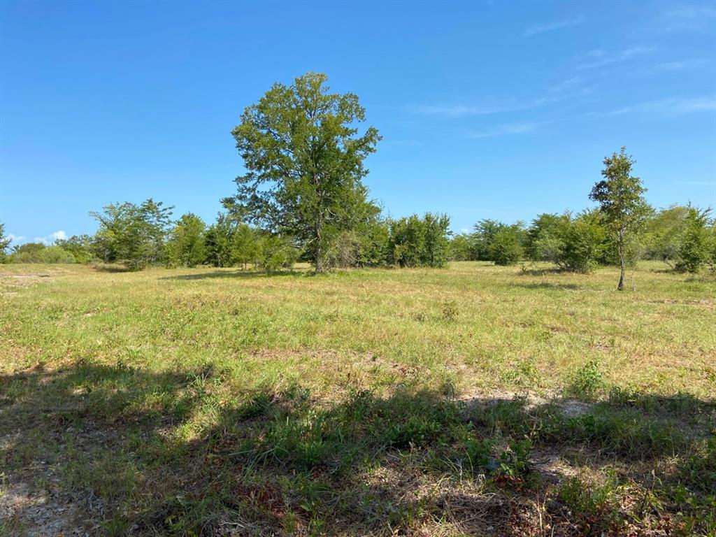 Active | 000 Morgan Spur Huntsville, Texas 77342 9