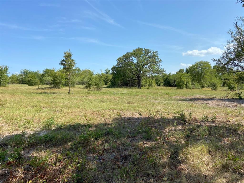 Active | 000 Morgan Spur Huntsville, Texas 77342 10
